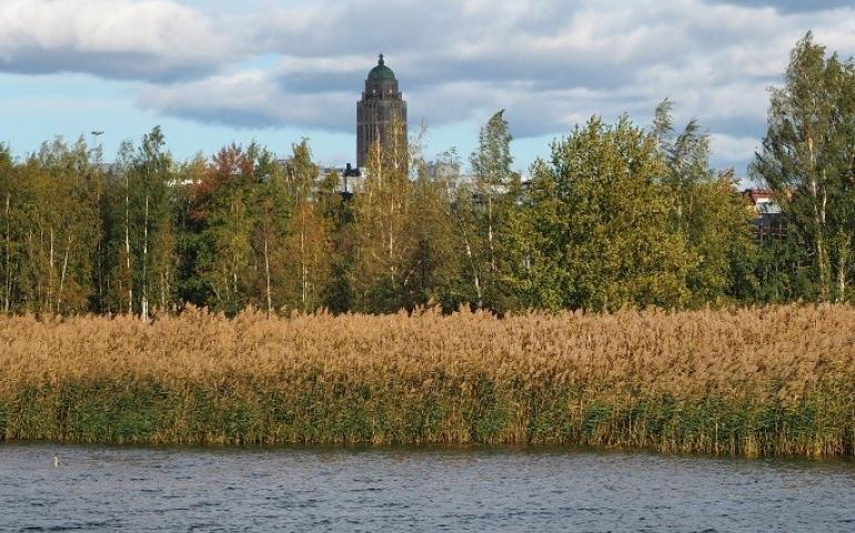 A view cross water and reeds, with a brick tower in the background